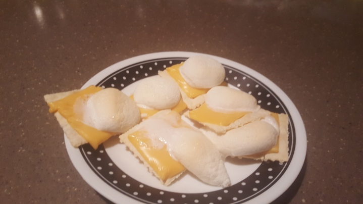 Crackers, Cheese, & Marshmellows